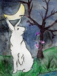 Poetic Rabbit